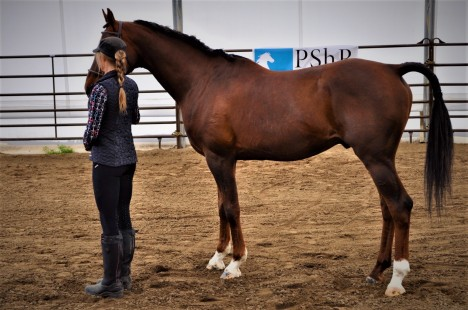 Celena and Rock at the PShA Inspection